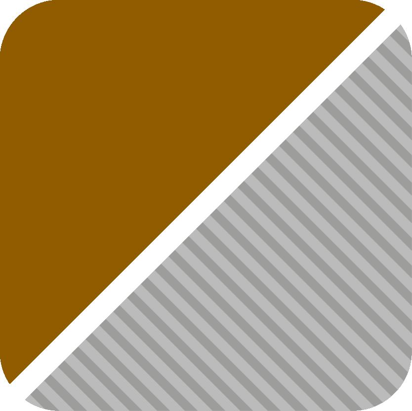 braun-kombinier