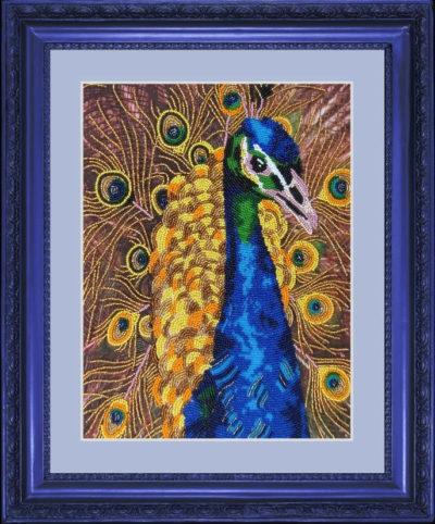 Peacock | Needlepoint Kits