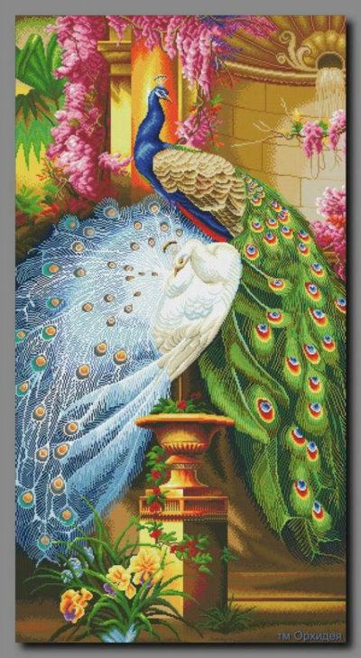 Peacocks in the garden | Needlepoint Kits
