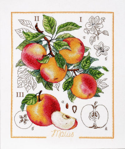Apple botaniq | Needlepoint Kits