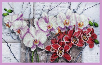Symphony of Orchids | Needlepoint Kits
