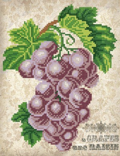 Vintage. Grapes | Needlepoint Kits