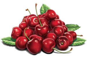 A handful of sweet cherries | Needlepoint Kits