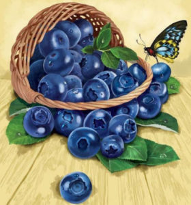 Blueberry basket | Needlepoint Kits