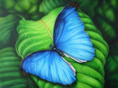 Blue butterfly | Needlepoint Kits