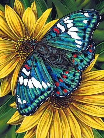 Butterfly on gerbera | Needlepoint Kits