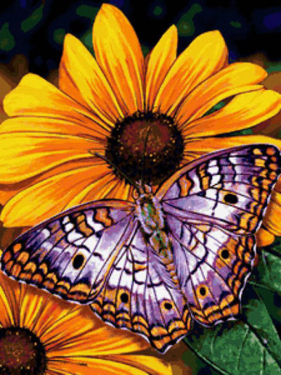 Butterfly on flowers | Needlepoint Kits