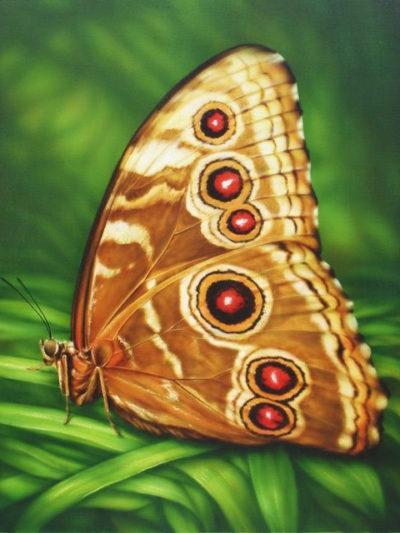 Monarch butterfly | Needlepoint Kits