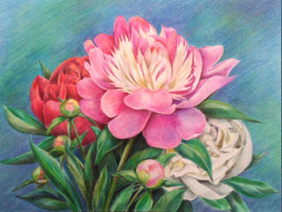 Bouquet of peonies | Needlepoint Kits