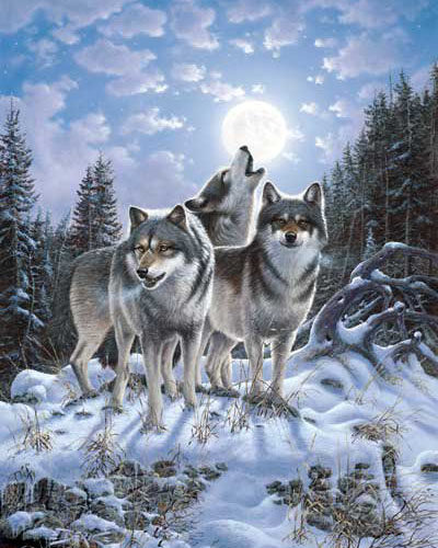 Pack of wolves | Needlepoint Kits