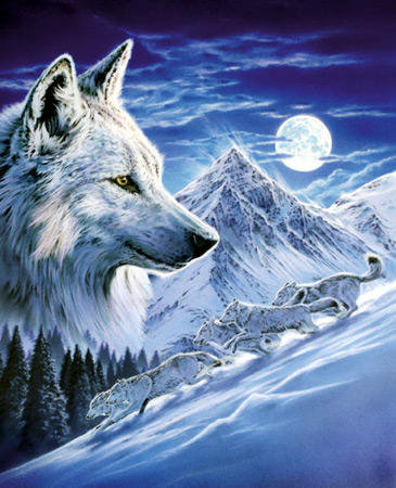 Full Moon Wolves | Needlepoint Kits