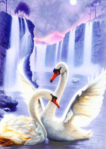 Pair of swans | Needlepoint Kits
