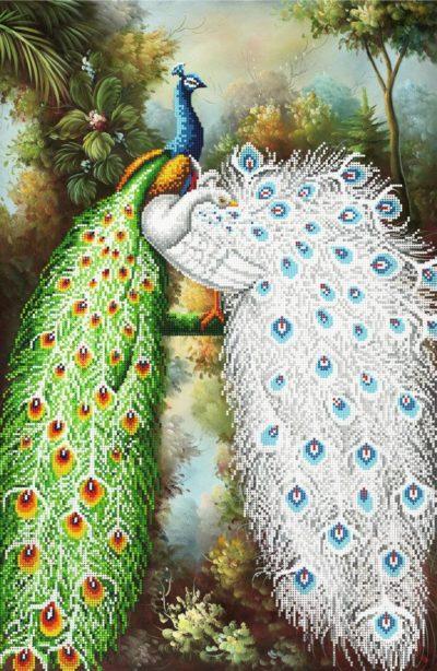 The Couple of Peacocks | Needlepoint Kits