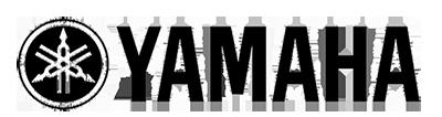 комбинированный тип логотипа