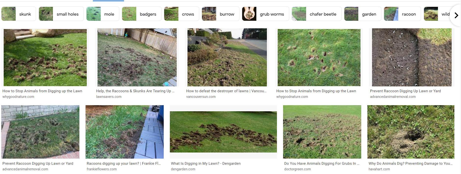 Кейс: как картинка на сайте повлияла на ранжирование в Google 5