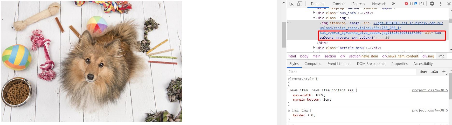 Заполненный тег alt у картинки на сайте