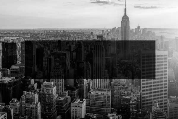 NOAH Startups - Wise Data Media