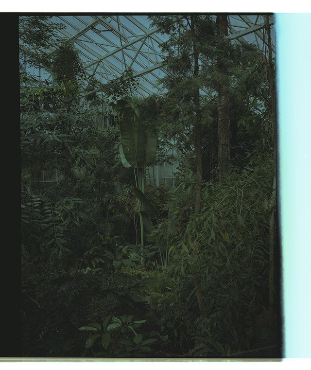 Artwork Untitled (series Glasshouses)#6 main picture