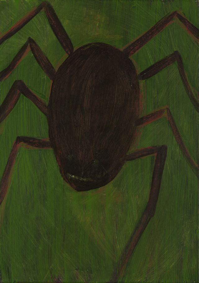 Artwork Pavouk, klíště main picture