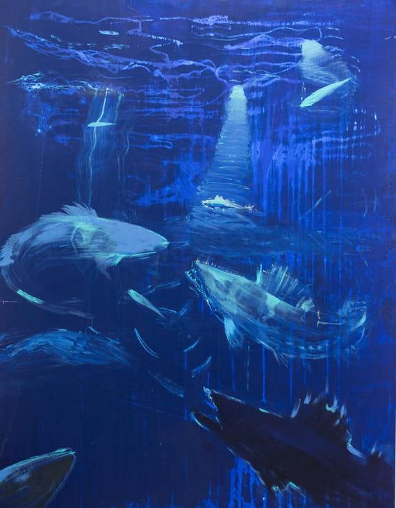 Ryby by Martin Salajka,