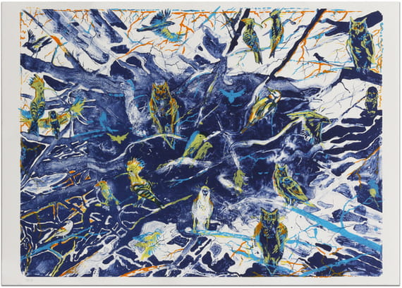 Ptáci by Martin Salajka,