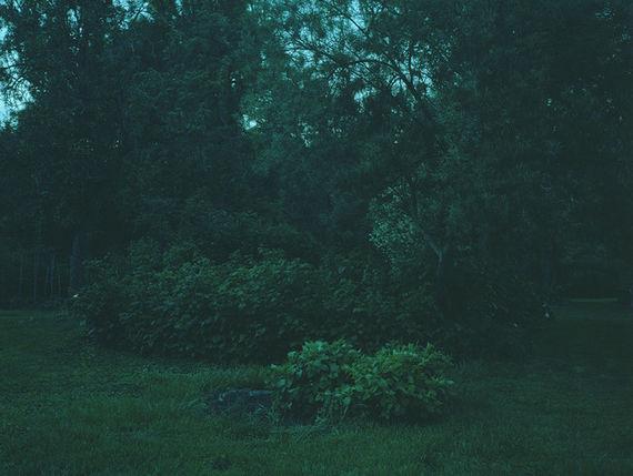 Bez názvu (série Zahrada)#7 by Adéla Kremplová,