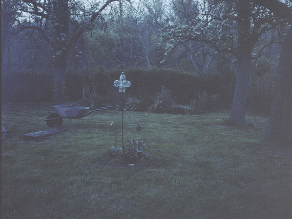 Bez názvu (série Zahrada)#5 by Adéla Kremplová,