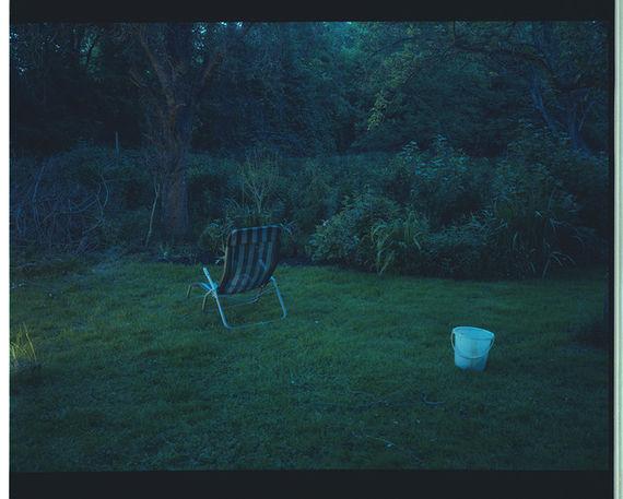 Bez názvu (série Zahrada) by Adéla Kremplová,
