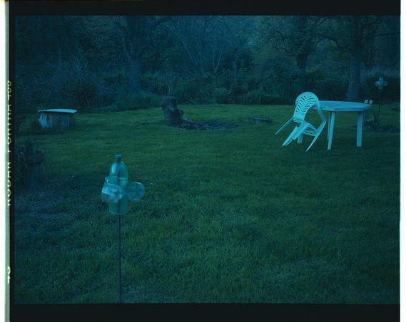 Bez názvu (série Zahrada)#3 by Adéla Kremplová,