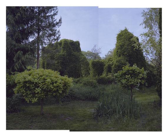 Bez názvu (série Zahrada)#1 by Adéla Kremplová,
