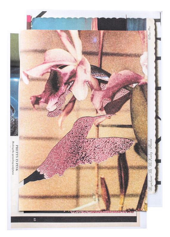 Kolibřík #1 by Aňa Jakš,