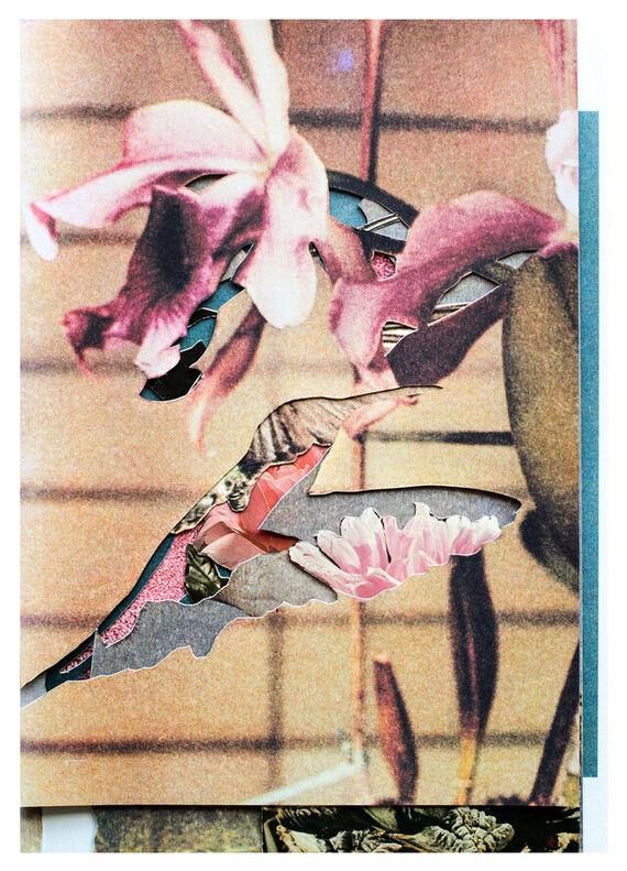 Kolibřík #2 by Aňa Jakš,