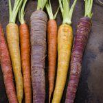 Quali sono le proprietà delle carote?
