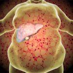 Ripulire il fegato grasso con il pompelmo