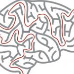 Un test virtuale ci dirà se svilupperemo l'Alzheimer   Pazienti.it