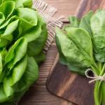 Le verdure a foglia verde riducono il rischio di glaucoma   Pazienti.it