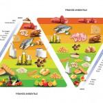 La Doppia Piramide Alimentare e Ambientale: il segreto per star bene   Pazienti.it