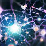 Alzheimer: scoperta una nuova terapia per la sua cura   Pazienti.it
