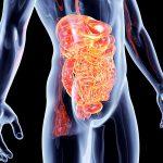 Gastroenterite nei bambini e negli adulti: i sintomi e le cure | Pazienti.it