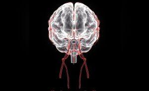beriberi: quello che c'è da sapere sulla malattia | Pazienti.it