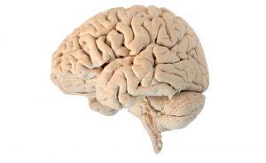 sindrome di Tourette: sintomi cause e terapie | Pazienti.it