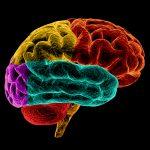 Cervello-150x150 | Pazienti.it