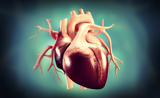 Morte cardiaca improvvisa | Pazienti.it