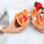 A un passo dalla cura: sconfiggere le patologie cardiache grazie alla genetica | Pazienti.it