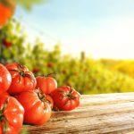 Diabete: curariamolo con faglioli, broccoli e pomodori! | Pazienti.it
