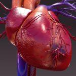 Shutterstock_456479548-1-150x150 | Pazienti.it
