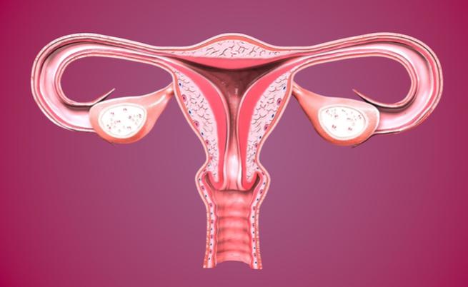 Mioma uterino, chi è più a rischio? | Pazienti.it
