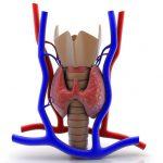 Ipotoroidismo-150x150 | Pazienti.it