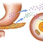 Diabete-150x150 | Pazienti.it