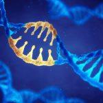 L'autismo è ereditario: la causa è nei geni | Pazienti.it